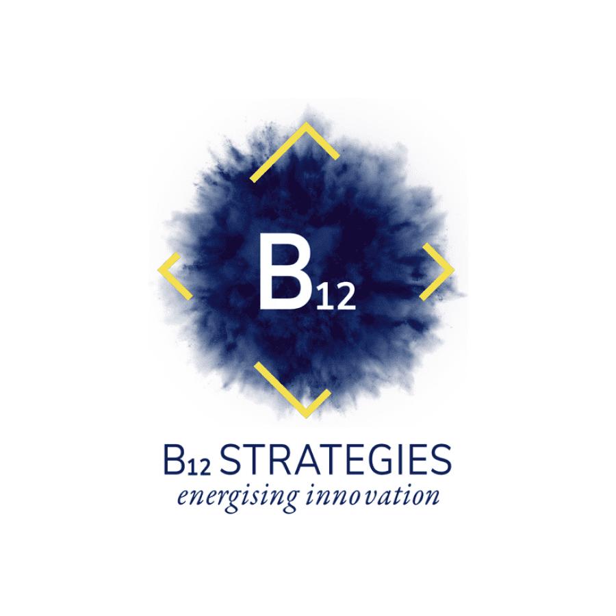 B12 Startegies