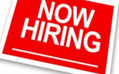 Transcriber Vacancies